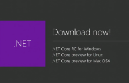 ms-.net-preview